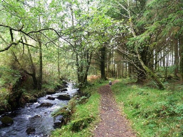 A path beside the Kenick Burn