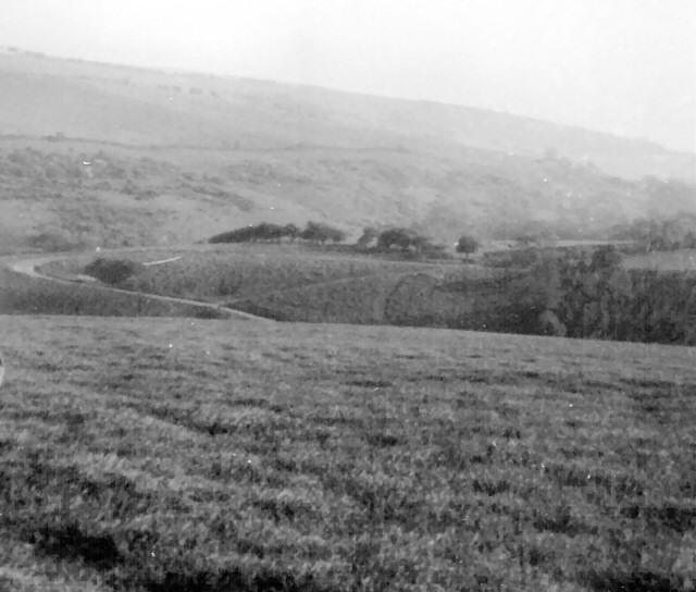 Millington Pasture