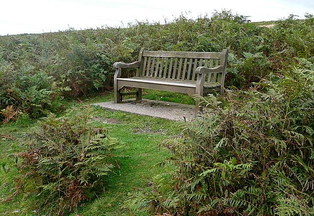Seat on Mill Moor