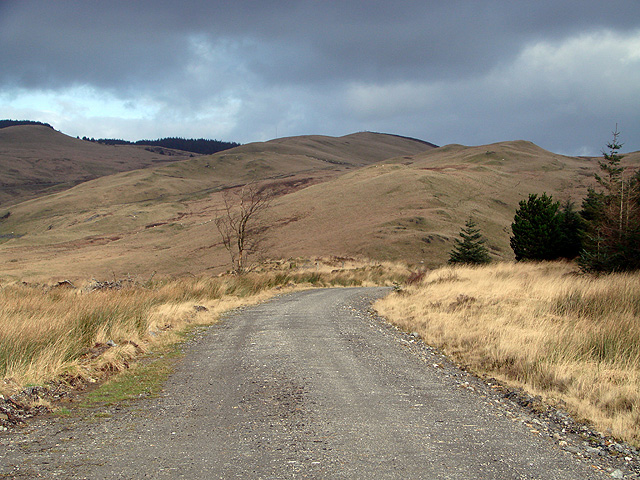 Forestry road by Bryn Gwyn - looking north