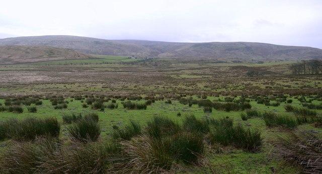 Rough pasture above Cleshkett Beck