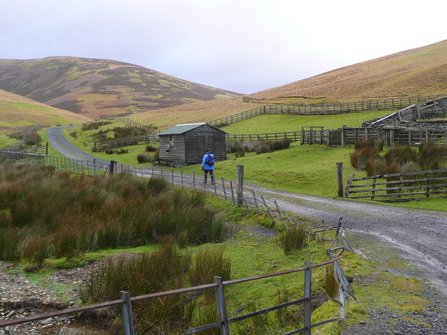 The sheep pens near Grains