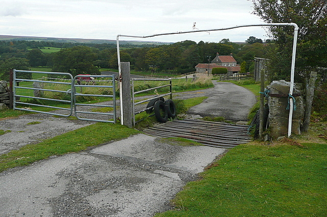 Birchwood Farm