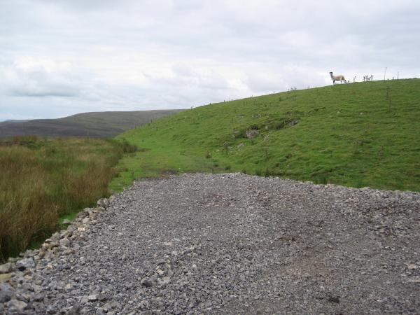 Moorland Track, Scarrowmanwick Fell