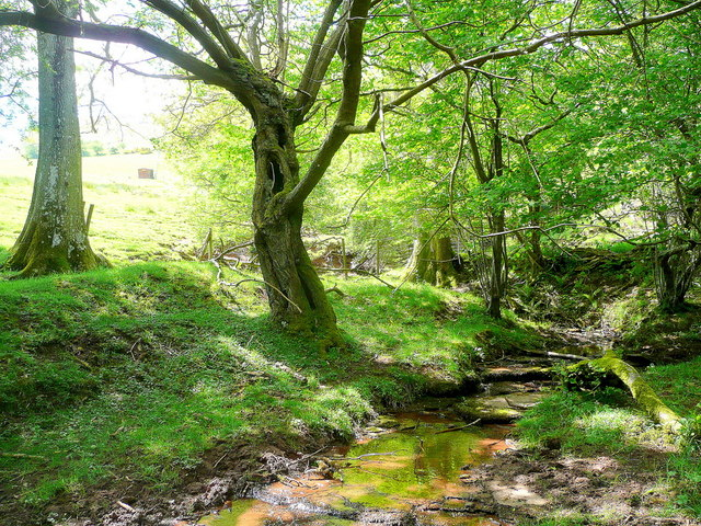 Stream descending Black Hill