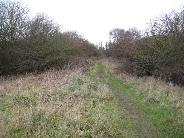 Coventry: Former Wyken Mineral Branch Railway