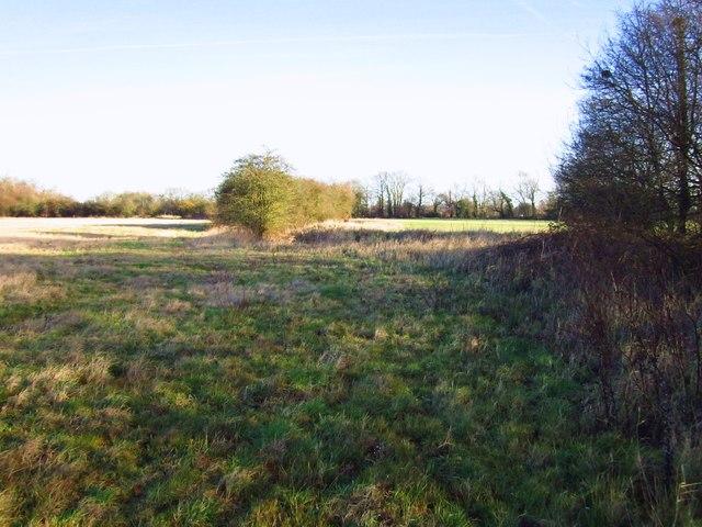 Field edge
