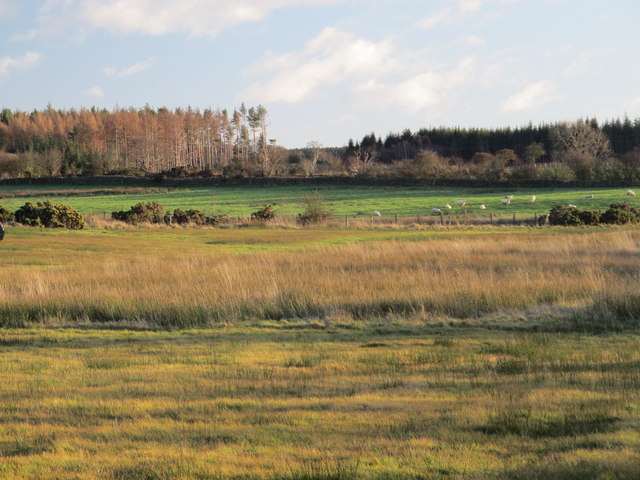 Farmland northeast of the Lead Road