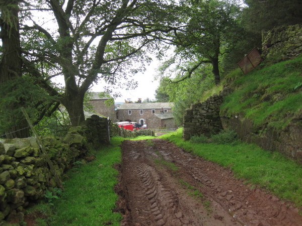 Footpath leading to Davygill Farm