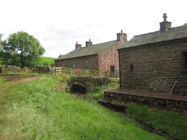 Davygill Farm & Lino Beck