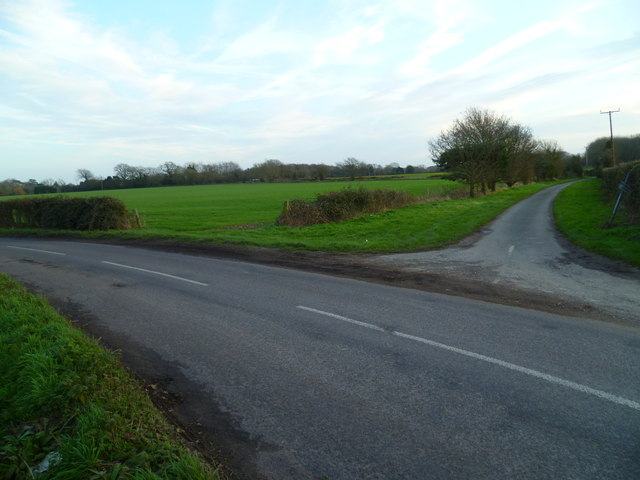 Field at lane junction at Trumley