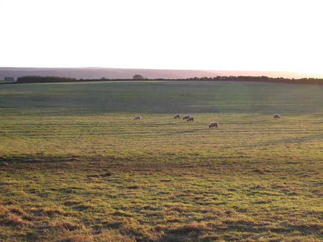 Farmland east of Barleyhill