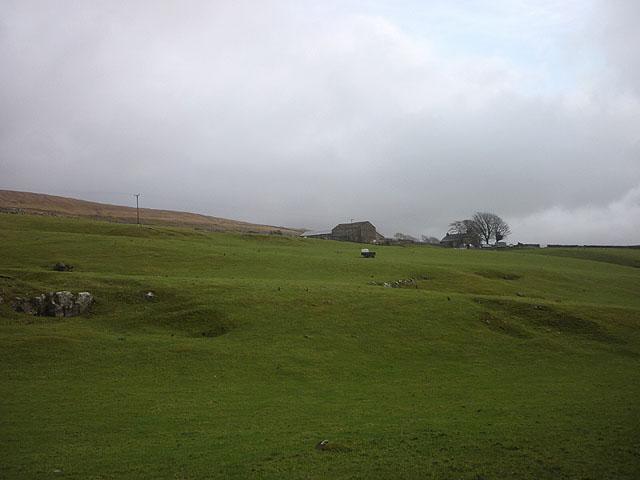 Scale Pasture
