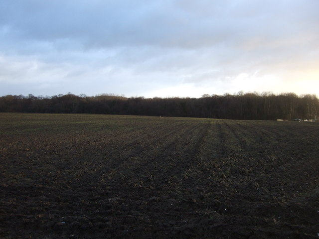Farmland, Skelton Moor Farm