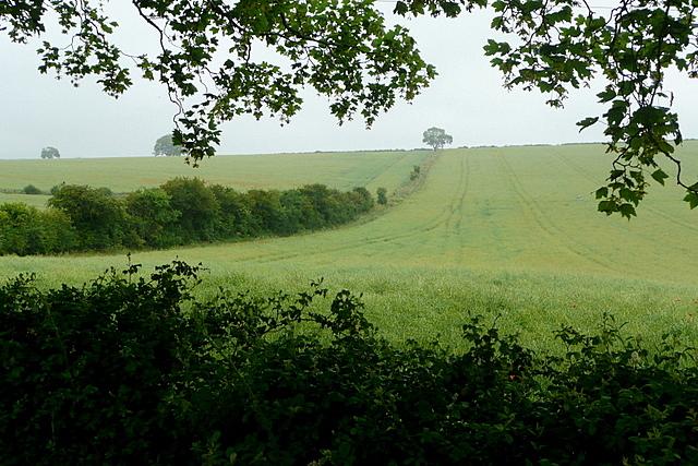 Land at Larkwhistle Farm