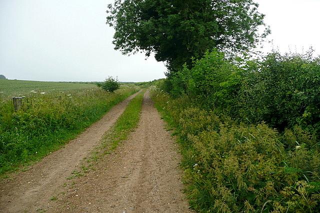 Footpath on Harley Hill