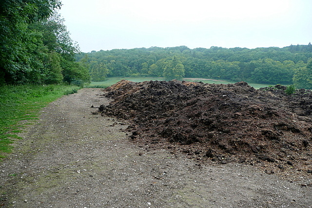 Manure at Low Grounds