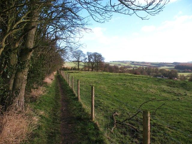 Footpath east of Pocklington