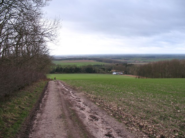 The Wolds Way at Warrendale Plantation