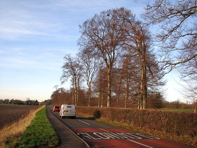 The road to Bottisham
