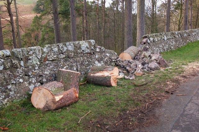 Storm damaged wall, Glencorse