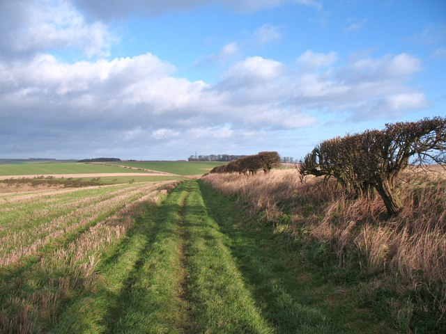 The Wolds Way at Becks