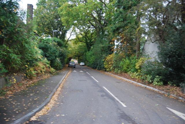 Linsford Lane