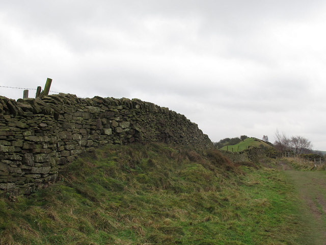 Stone wall on Kerridge Hill
