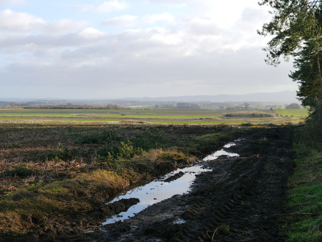 A View Towards Charterhall Airfield