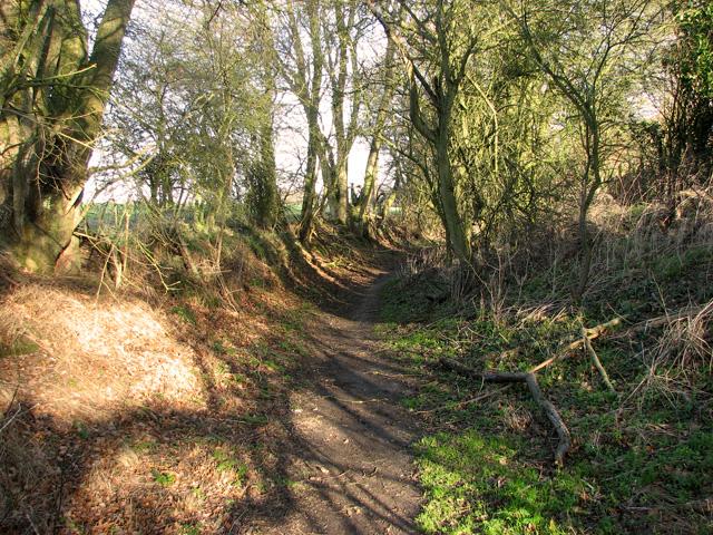Sunken path to Capel Road, Bentley