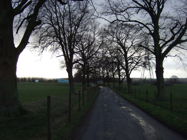 Farm track heading south
