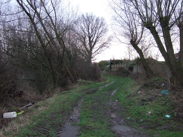 White Cliff Lane (track)