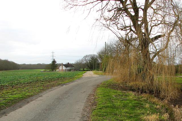Public footpath to Ramsey Wood, Hintlesham
