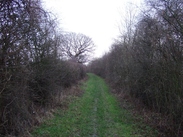 Track (footpath) off Whitehouse Lane