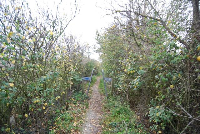 Footpath near Allens Hill Farm