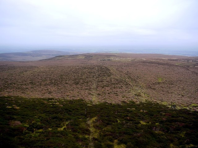 North-west from the slopes of Cold Fell