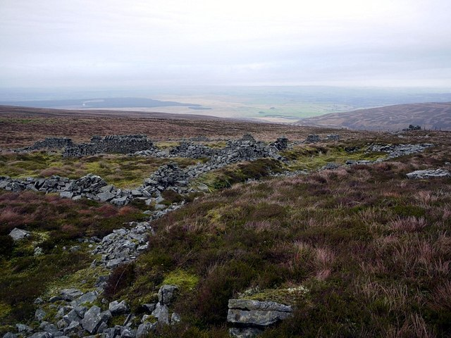 Ruined sheepfold north-east of Cold Fell