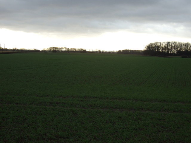 Farmland off the A63