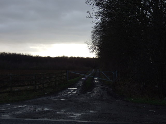 Track (footpath) off the A63