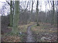 SE4431 : Footpath in Peckfield Plantation by JThomas