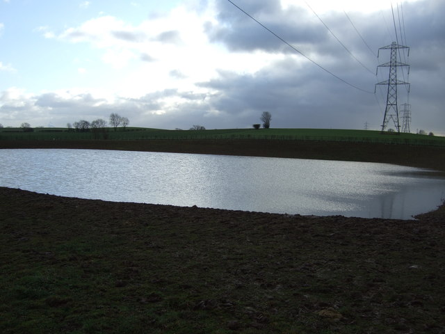 Pond off Westfield Lane