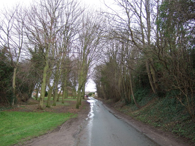 Westfield Lane towards South Milford