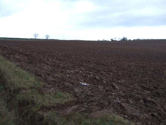 Farmland off the B1222