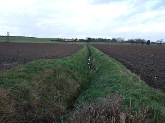 Drainage ditch off Coldhill Lane