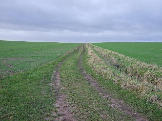 Farm track off Mile Hill