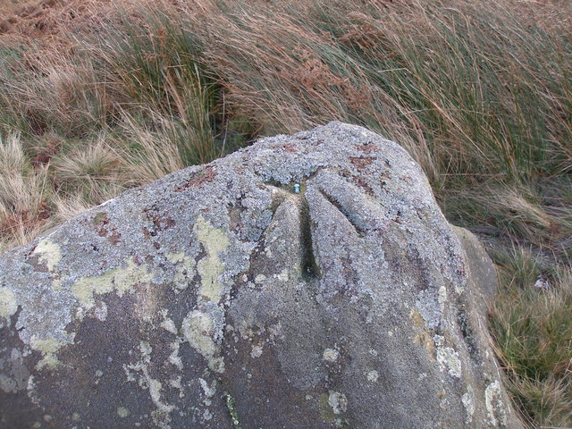 Ordnance Survey rivet benchmark on rock next to Pennine Bridleway