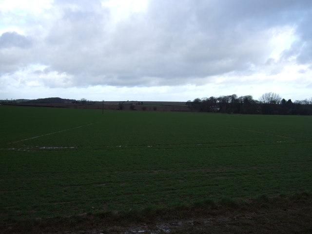 Farmland near Saxton