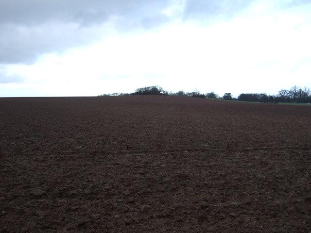 Farmland off Headwell Lane