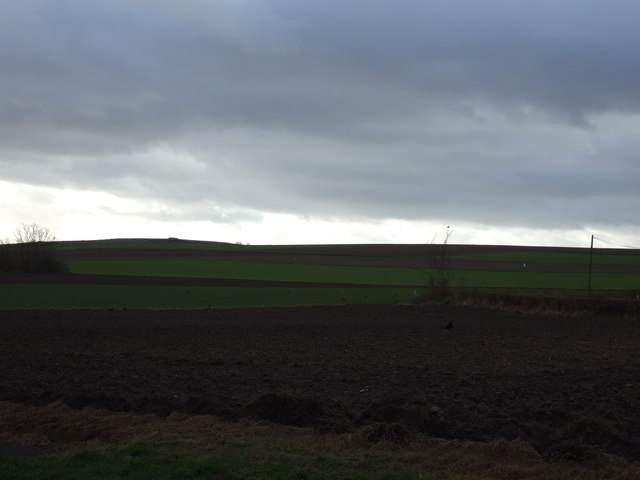 Farmland near Barkston Ash