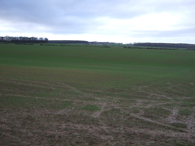 Farmland off the B1217